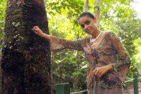幼いころから樹液を採取して生活を支えたゴムの木の前に立つマリナ・シルバさん=ジェファーソン・ルディー氏撮影
