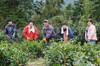 「伝統の石鎚黒茶を伝え続けたい」と意気込む、さつき会のメンバー=愛媛県西条市で