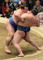 豪栄道を攻める琴奨菊(左)=東京・両国国技館で2016年1月24日、内藤絵美撮影