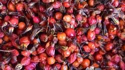 モンゴルの市場で売られていた薬草ノホン・ホシューの真っ赤な果実