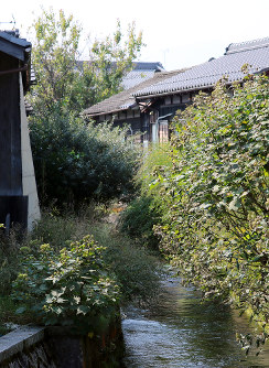 The Harie-Okawa River, which flows to Lake Biwa some 1.5 kilometers away, is seen in the Harie district of Takashima, Shiga Prefecture. (Mainichi)