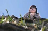 高台にあった自宅跡から雄勝湾を見つめる高橋千賀子さん(64)は5歳年上だった夫伝(ゆづる)さん(当時64歳)と同じ年齢になった。伝さんは自宅前で別れたまま行方不明だ。眼下に広がる景色は盛り土と工事のトラックばかり。住人の大半は町外に出てしまったが「この地から離れる考えは最初からないんです」。自宅のあった場所にはもう家を建てられないため、せめて明るくなるよう沢山のリコリスの花を植えた=宮城県石巻市雄勝町で2016年2月18日、梅田麻衣子撮影