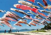 東日本大震災を忘れまいと今年も飾られたこいのぼり