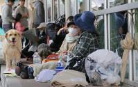 ペットの同行避難が浸透してきている=熊本県益城町で4月17日、三村政司撮影