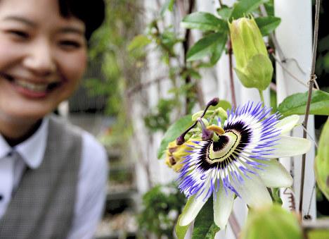 Photo Journal: Bloom o'clock