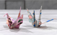 Paper cranes hand-folded by U.S. President Barack Obama are seen at the Hiroshima Peace Memorial Museum on May 27, 2016. (Mainichi)