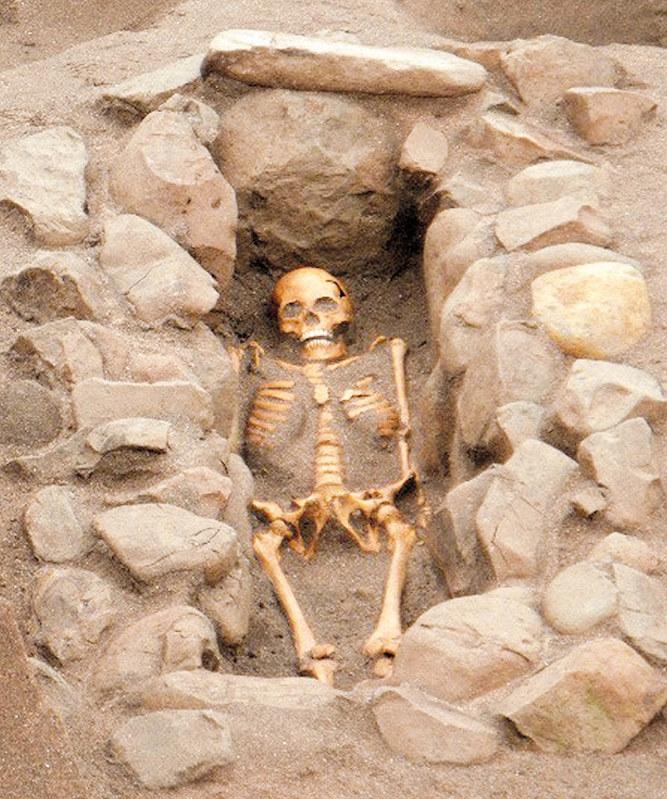鎌倉:古墳時代の箱式石棺墓出土...