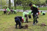 ミズナラの苗を植樹する小学生と振興局職員