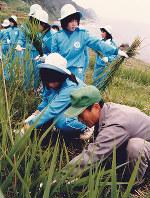 白米千枚田で草刈りに汗を流す安城東高の生徒たち=1986年6月、室良雄さん提供