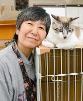 行き場のない猫の保護に取り組む池村寿美子さん=金沢市で、金志尚撮影
