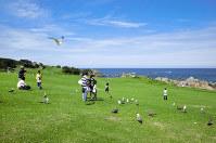 種差海岸を代表する景観の「天然芝生地」=青森県八戸市観光課提供
