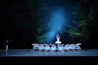 清里の自然を背景に繰り広げられた「白鳥の湖」=バレエ・シャンブルウエスト提供