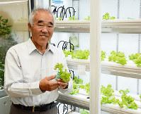 水耕栽培で育ったレタスを持つFUJIYAの冨士谷開発部長=徳島市雑賀町の県立工業技術センターで、河村諒撮影