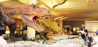 迫力満点のティラノサウルスとトリケラトプスの模型=愛媛県新居浜市大生院の県総合科学博物館で、近藤隆志撮影