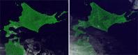 ひまわり8号から見ると、地表面が太陽照明角度によって異なる「表情」を見せる(地形の効果も含まれる)。2015年8月15日午後1時(左)と午後5時=千葉大提供