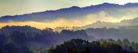 朝日に染まる漂う霧。時間と共に、隠れていた風景が徐々に姿を現し始める=島根県邑南町で=日本写真家協会会員・船津健一撮影