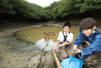 水を抜いた池の泥の中にいたまだ小さなカエルを手に取る生物部員=和歌山県田辺市新庄町鳥ノ巣の池で、山本 芳博撮影
