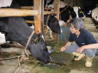 天香久山のふもとで、こだわりの牛乳づくりに取り組む西井さん=奈良県橿原市の西井牧場で、松本泉撮影