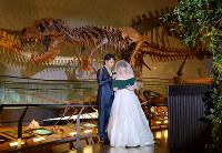 ティラノサウルスの全身骨格の前で誓いの言葉を述べる新郎新婦役=福井県勝山市の県立恐竜博物館で、竹内望撮影