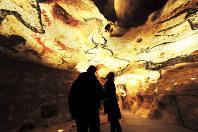 再現された洞窟に入ると、頭上に広がる巨大な牛の壁画に圧倒される=フランス南西部モンティニャックで