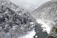嵐山公園の展望台に立つと、真っ白に染まった絶景の中をゆっくりと進む1隻の船が見えた=京都市右京区で、小松雄介撮影