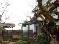 太平洋が一望できる旧日向別邸。タウトが設計したのは右の建物の下にある部分=静岡県熱海市で、青山郁子撮影