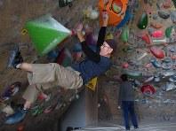 ホールドと呼ばれる突起物に手足をかけて登るクライミング。登り切った時の達成感は格別という=埼玉県川越市脇田町のクライミングジム「ロッククラフト川越」で