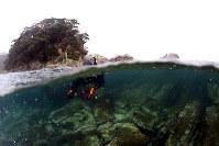 権現島周辺の海底に転がる東西方向に割れ目が入った無数の岩=和歌山県串本町の紀伊大島で、山本芳博撮影