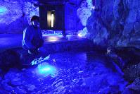 潮風に強い集魚灯の青色LEDで照らされた青の洞窟の池や望気楼=石川県珠洲市で、中津川甫撮影