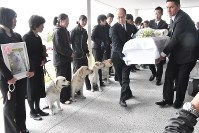 Trainers at Marugame Dog School and offspring of the dog Kinako watch as Kinako's coffin is carried at a ceremony in Marugame, Kagawa Prefecture, on March 23, 2017. (Mainichi)