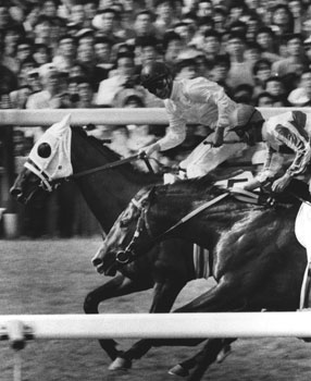 昭和最後のダービー馬となったサクラチヨノオー(奥)