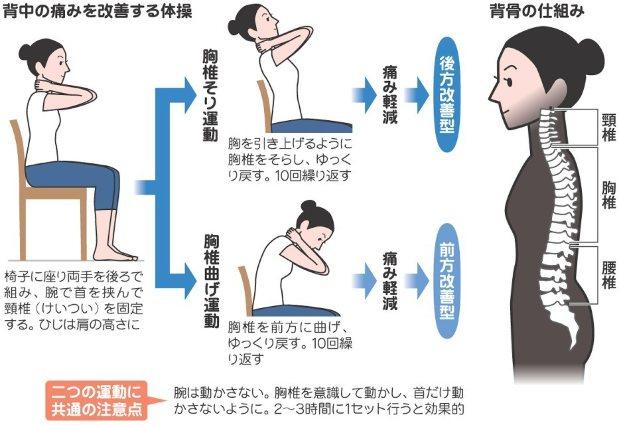 背中の痛みを改善する体操