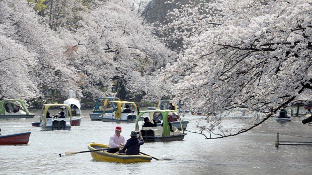 作品に登場する井の頭公園=東京都武蔵野市