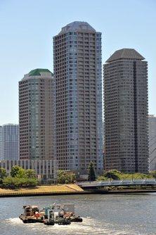 永代橋から見た佃島の高層マンション群=東京都内で2015年7月14日、関口純撮影