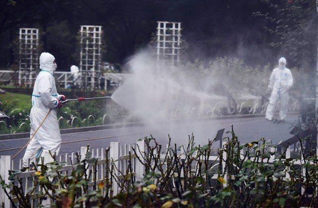 デング熱の国内感染が確認されたことを受け、男女3人が蚊に刺されたとみられる代々木公園で行われた蚊の駆除=東京都渋谷区で2014年8月28日午後5時52分、西本勝撮影
