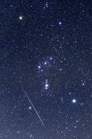 オリオン座の中を下に向かって横切るように流れる、ふたご座流星群の流れ星=北海道壮瞥町で2015年12月14日午前1時31分、手塚耕一郎撮影