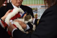 New stationmaster Love tries on a Santa costume to welcome a train arriving at Ashinomaki Onsen Station in Aizuwakamatsu, Fukushima Prefecture, on Dec. 24, 2015. (Mainichi)