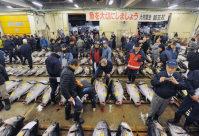 移転のため最後となった築地市場での初競りで生鮮マグロの値踏みをする仲卸業者たち=東京都中央区で2016年1月5日午前4時43分、猪飼健史撮影
