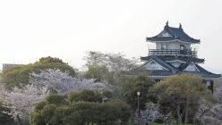 1958年に復元された浜松城天守閣=2010年4月6日、瀬上順敬撮影