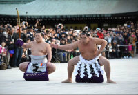 Yokozuna Kakuryu, right, performs the