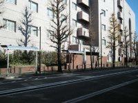 道路の向かい側には日本女子大方面のバス停=銅崎順子撮影