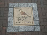 道路に埋め込まれているタイル。府中市の鳥はヒバリ=銅崎順子撮影
