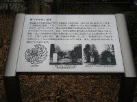 正門に向かって右手にケヤキ並木の説明板=銅崎順子撮影