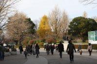 東京都文化会館と国立西洋美術館の間を道なりに進む=江刺弘子撮影
