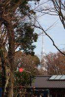 振り返るとここからも東京スカイツリー=江刺弘子撮影