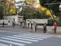 横断歩道を渡る=高橋望撮影