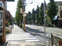 駒沢公園通りは車通りも多くない=柴沼均撮影