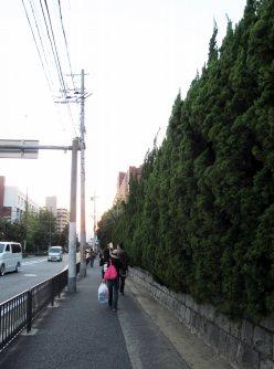 正門へは通りをぐるっと回り込み、南側へ=2015年10月3日、五十嵐英美撮影