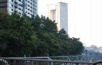 JR飯田橋駅西口を背にすると、正面には法政大学のボアソナード・タワーが見える=小島昇撮影