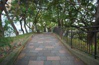 この道をひたすら進む=小島昇撮影